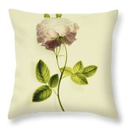 A Pink Rose Throw Pillow by James Holland