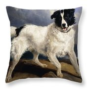 A Portrait Of Neptune Throw Pillow by Sir Edwin Landseer