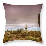 A Rainy Morning Throw Pillow by Saija  Lehtonen