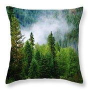 A River Runs Through It  Throw Pillow by Joseph Noonan