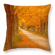 A Romantic Country Walk In The Fall Throw Pillow by Lingfai Leung