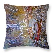 A Secret Beneath The Surface Throw Pillow by Gwyn Newcombe