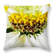 A Small Crown Of Glory Throw Pillow by Sarah Loft