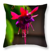 A Special Red Flower Throw Pillow by Gandz Photography