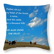 A Thousand Hills Throw Pillow by Lorna Rogers Photography