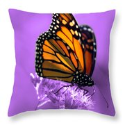 A Touch Of Summer  Throw Pillow by Cathy  Beharriell