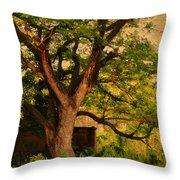 A Tree Throw Pillow by Jenny Rainbow