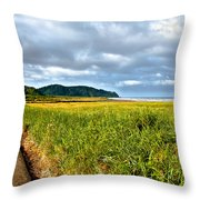 A View From Discovery Trail Throw Pillow by Robert Bales