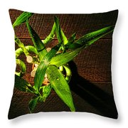 Above the Bamboo Throw Pillow by Olivier Le Queinec