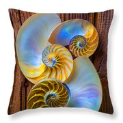 Abstract Chambered Nautilus Throw Pillow by Garry Gay