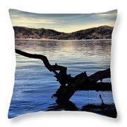 Adrift Reflection Throw Pillow by Cheryl Young