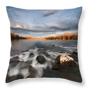 After The Rain Throw Pillow by Davorin Mance