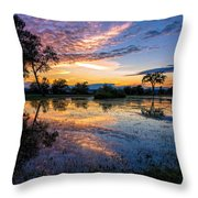 After The Rains Throw Pillow by Mary Amerman