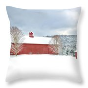 After The Storm Throw Pillow by Bill Wakeley