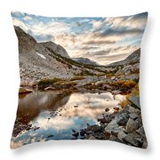 Afternoon Reflections Throw Pillow by Cat Connor