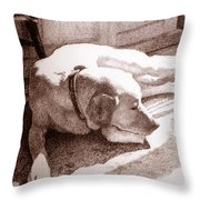 Afternoon Sun Throw Pillow by Lorraine Zaloom