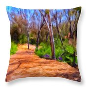 Afternoon Walk Throw Pillow by Michael Pickett