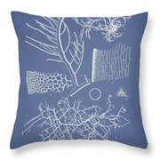 Algae Throw Pillow by Aged Pixel