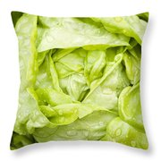 All The Year Round Throw Pillow by Anne Gilbert