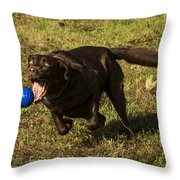 Almost Got it Throw Pillow by Jean Noren