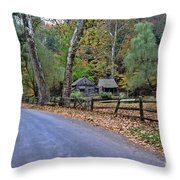 Almost Home Throw Pillow by Paul Ward