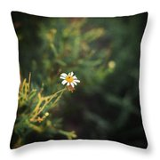 Alone Throw Pillow by Taylan Soyturk