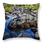 Alpine Stream Beartooth Mounain Range Throw Pillow by Edward Fielding