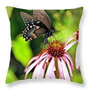Amazing Butterfly Throw Pillow by Marty Koch
