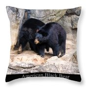 American Black Bear  Throw Pillow by Chris Flees