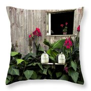 Amish Barn Throw Pillow by Diane Diederich