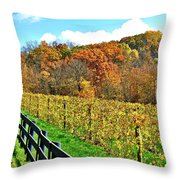 Amish Vinyard Two Throw Pillow by Frozen in Time Fine Art Photography