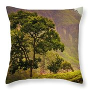 Among The Mountains And Tea Plantations. Nuwara Eliya. Sri Lanka Throw Pillow by Jenny Rainbow
