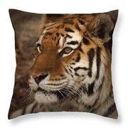 Amur Tiger 2 Throw Pillow by Ernie Echols