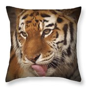 Amur Tiger 5 Throw Pillow by Ernie Echols