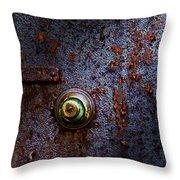 Ancient Entry Throw Pillow by Tom Mc Nemar