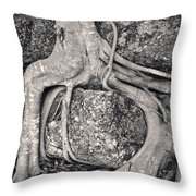 Ancient Roots Throw Pillow by Adam Romanowicz