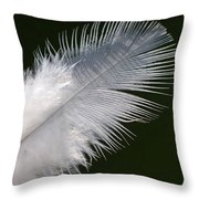Angel Feather Throw Pillow by Carol Lynch