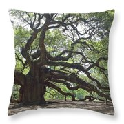 Angel Oak II Throw Pillow by Suzanne Gaff