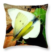 Angels Of The Morning Throw Pillow by Tami Quigley