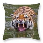 Angry Tiger Throw Pillow by Louise Heusinkveld