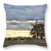 Angus Evening Throw Pillow by Jan Amiss Photography