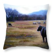 Angus Steer in Franklin TN Throw Pillow by Janet King