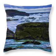 Ano Nuevo Seagull Throw Pillow by Blake Richards