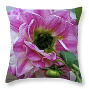 Another Point Of View Throw Pillow by Jeanette C Landstrom