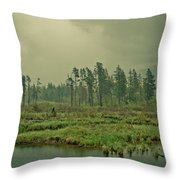 Another World-another Time Throw Pillow by Eti Reid