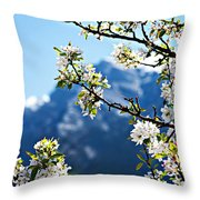 Apple Blossoms Frame The Rockies Throw Pillow by Lisa Knechtel
