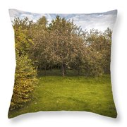 Apple Orchard Throw Pillow by Amanda And Christopher Elwell