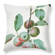 Apples Throw Pillow by Pierre Joseph Redoute