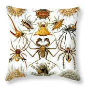 Arachnida Throw Pillow by Georgia Fowler