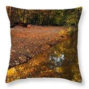 Arizona Autumn Reflections Throw Pillow by Mike  Dawson